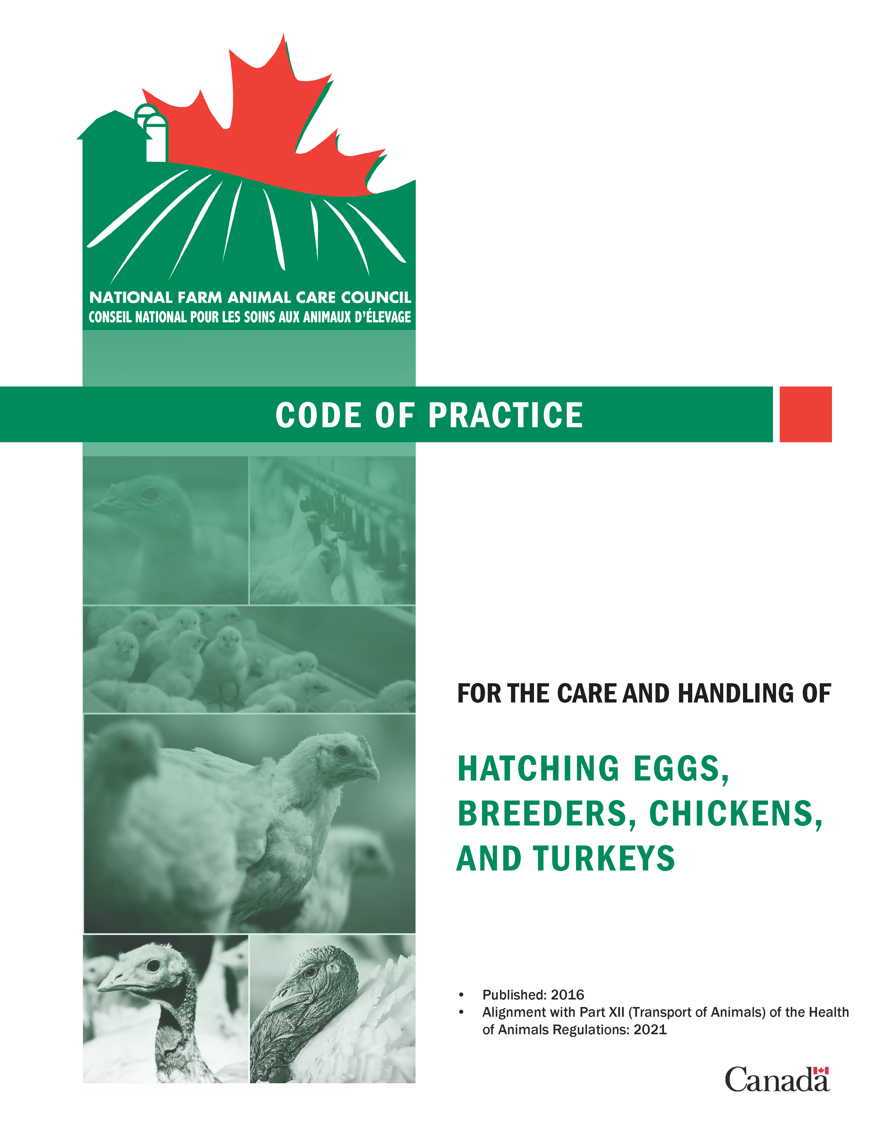chickens turkeys and breeders codes of practice for the care and
