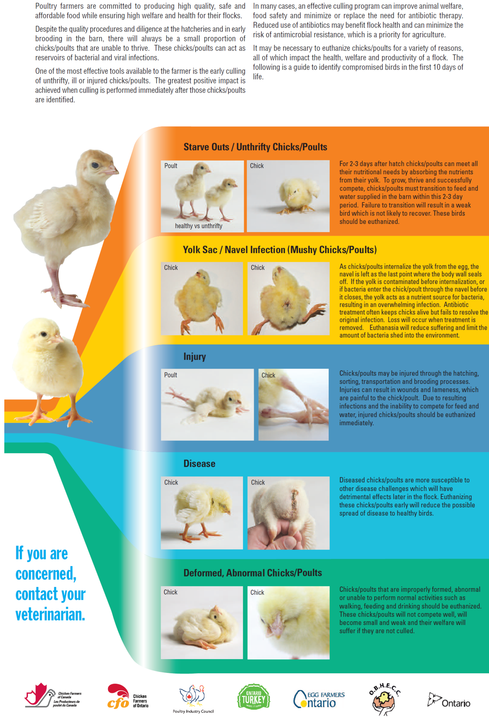 National Farm Animal Care Council - Poultry Code of Practice